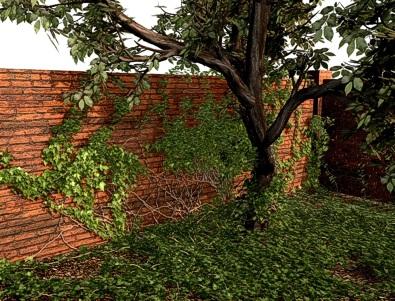 Ivy rendering